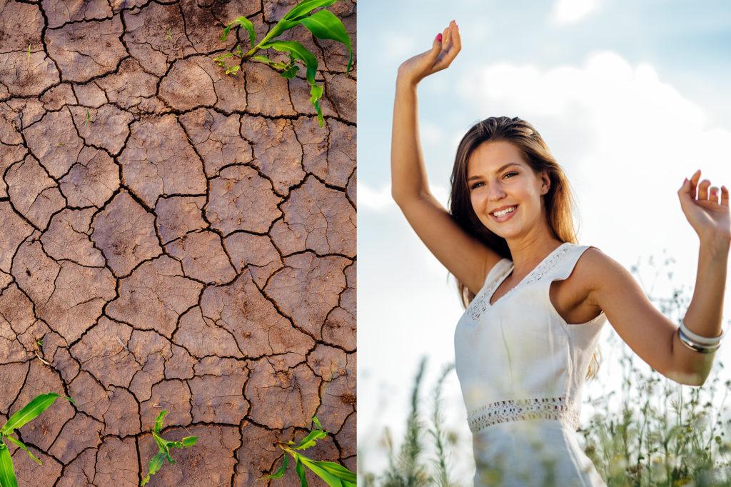 Nackter Boden heizt das Klima auf - Umwelt trifft Technik